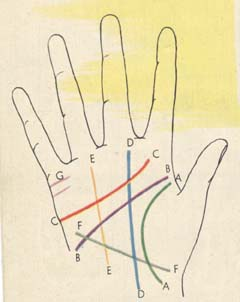 Learn Palmistry, hand analysis and palm reading at home