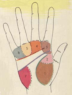 course of palmistry